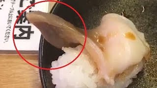 A diner was shocked when he tucked into his sushi dinner, to find it was moving