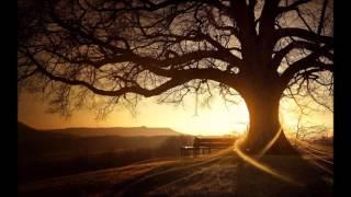 Esercizio di Mindfullness per rilassamento - Meditazione sul respiro