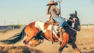 cowboy vagabundo
