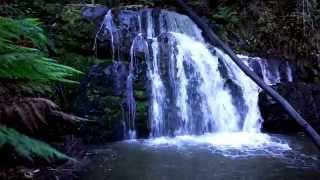 10 Minute Meditation with live waterfall - Soothing sounds of nature