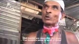 Funny Bangla song ft Kishoreganj  বল খেলাডা তউবা কইরা ছাড় (ব্যাপক বিনোদন )