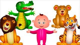 Five Little Babies Went To A Zoo (Single) | JamJammies Kids Songs | Nursery Rhymes & Kids Songs