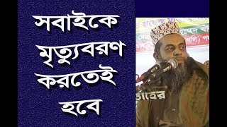 Maulana Muhammad Shamsuddin Kasami,মাওলানা শামসুদ্দিন কাসেমী, Kazi Alauddin Road Panchayat Committee