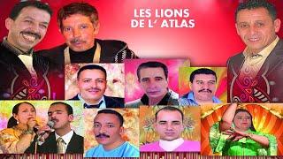 LES LIONS DE L