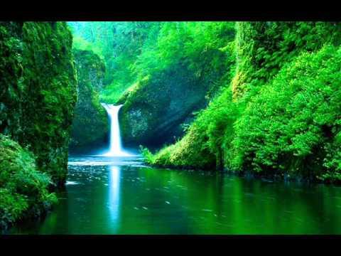 Sonido de agua y pajaros estudiar meditar mente en blanco pensar sonidos relajantes
