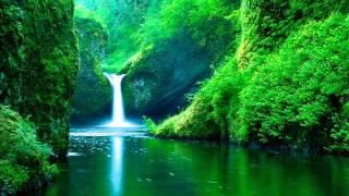 Sonido de agua y pajaros, estudiar, meditar, mente en blanco, pensar, sonidos relajantes