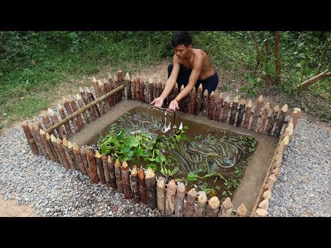 Xxx Mp4 Build Mini Pond For Eels Farming How To Build Eel Pond 3gp Sex
