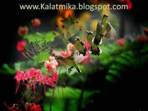 Kadhal Oviyam Tamil Karaoke For Male Singers