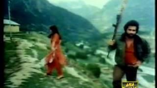 pakistani movie shikari song