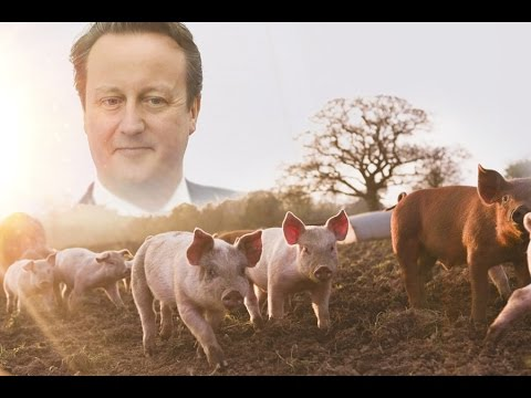 Xxx Mp4 Did Britain S Prime Minister Put Himself Inside A Dead Pig 3gp Sex