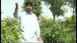 Hindko Mahiay, Saday Pichay, New Hindko, Hazara Culture Song