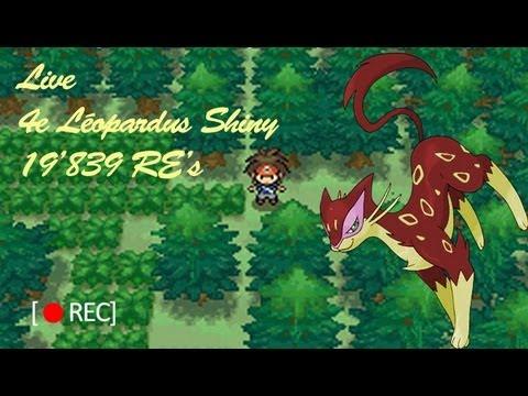 [SHTC] Live - 4e Léopardus Shiny / 4th Shiny Liepard - 19'839 RE's
