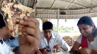 Surya, the Theri boy's Birthday | Empire Hotel | Funny Talks | Lovely Day |23-04-2016 | Clip 1
