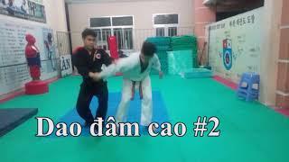 Những thế khóa Aikido căn bản (#1: Ikkyo)