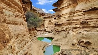 Qeshm Island Amazing Destination - Iran