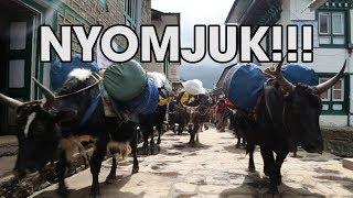Irány az EVEREST!!! | Nepál #1