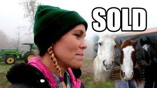 Farm Girl Sells Her Horse - Bittersweet Goodbye!