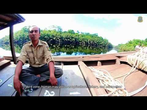 Desa Wisata   Air Hitam split Part 2