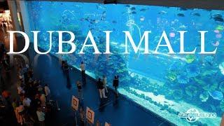 El centro comercial más grande del mundo - Dubai #2