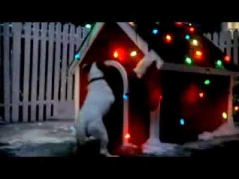 Xxx Mp4 Pet Shop Zoopolis 3gp Sex