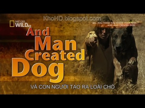 Animal Documentary 2015| And Man Created Dog| National Geographic