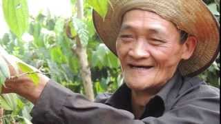 Sustainable Pepper Production in Vietnam