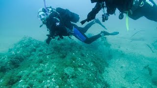 "Scuba Diving on the ""Anchovy 12"" Shoal, Liguria, Italy"