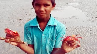 Lal Kakrar Chor Kuakata II How to catch red crab live