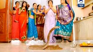 Snake enters in 'Sath Nibhana Sathiya'