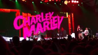Charley Marley Doing Bad Things With Jamaicans