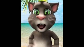 Mueve el To To el gato Tom corto