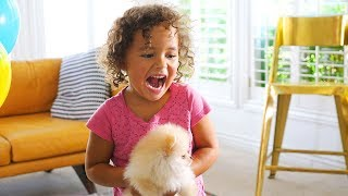 Kids React To New Puppy!   The Best Surprise Ever!