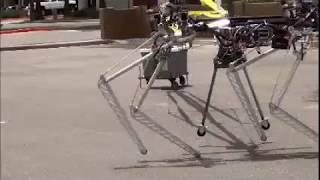4 Legged Robot