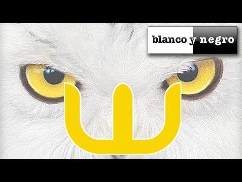 David Castell - OWL (Official Audio)