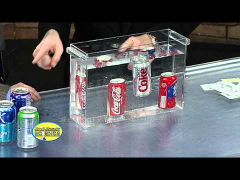 Float or Sink Cool Science Experiment