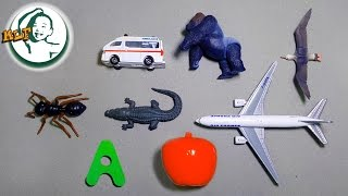 Words that start with A   Learn alphabet A with common toys !