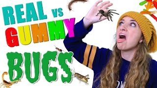 REAL vs Gummy BUG EATING Challenge 🕷️🤢 | Brooklyn and Bailey