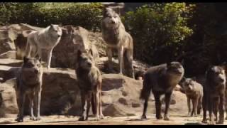 The Jungle Book 2016  Disney Animated Movie   Full Behind Featurette HD