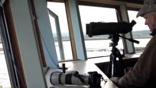 A quick tour of the Parrinder HIde, Titchwell.mp4