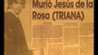 triana recordando a jesús de la rosa