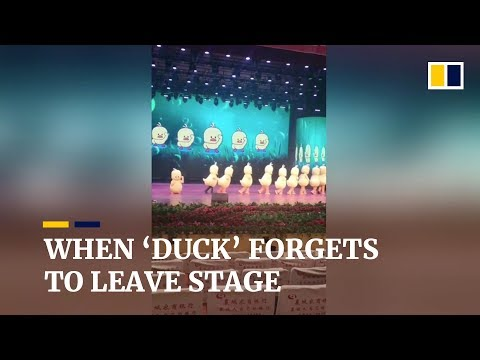 Xxx Mp4 Hilarious Duck Dance Performer Forgets To Leave Stage In China 3gp Sex