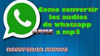 Opus a mp3 audios de whatsapp