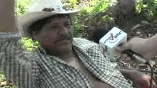 Productores de coco de la comunidad de Luis Echeverría afectados por el paso del huracán Ernesto