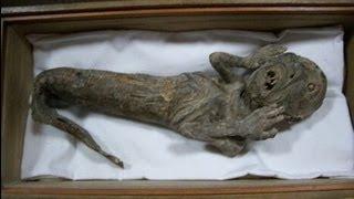 The History of Mermaids