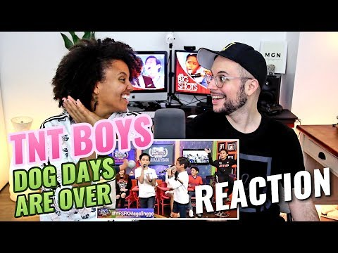 TNT boys - Dog Days Are Over | REACTION