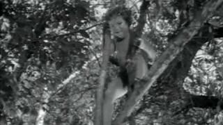Tarzan & Boy