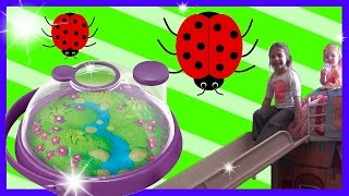 A miraculous Ladybug search! Outside Family Fun Lady Bug Meadow kids video toy review
