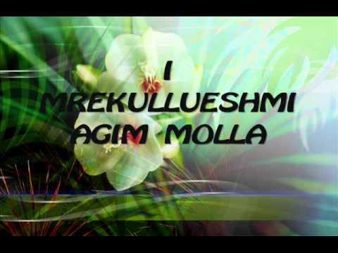 AGIM MOLLA sylqabegu.wmv