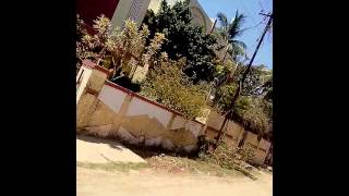 Chennai aunty
