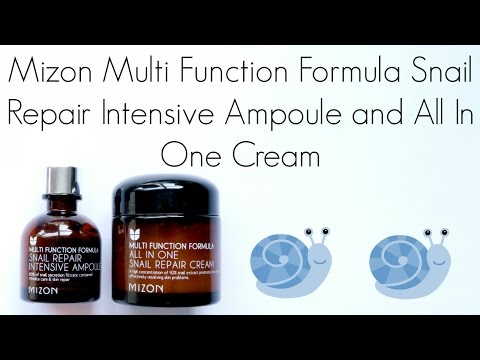 Review: Mizon Multi Function Formula Snail Repair Intensive Ampoule and All In One Cream